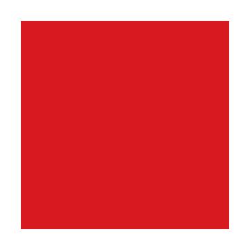 exec-logo-copy